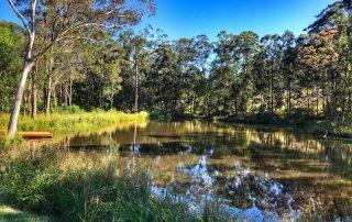 Amara Retreat Yoga and Detox - Lake